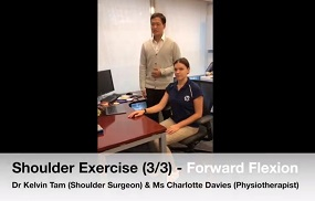 Shoulder Exercise 3 - Forward Flexion